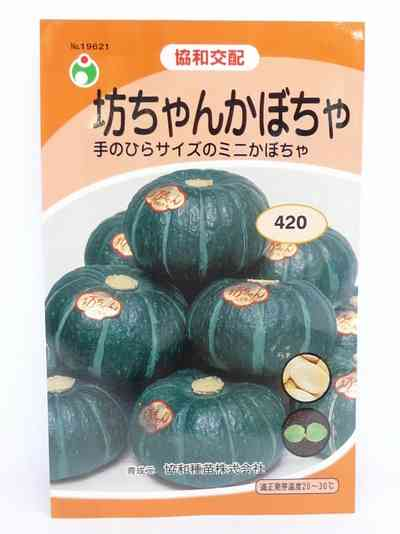 お寺の和尚さんがかぼちゃの種をまきました、の後は?