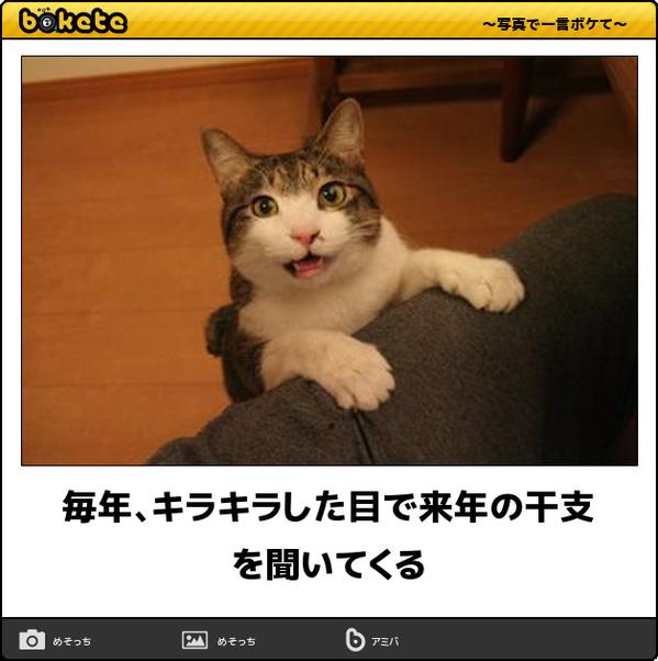 boketeを貼るトピ【出来たら新ネタ】