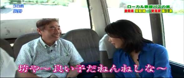 『ローカル路線バス乗り継ぎの旅』好きな方。