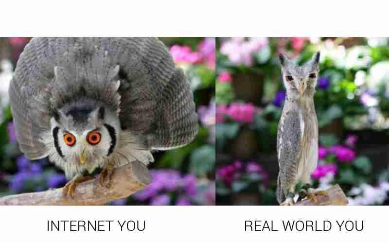 ネット世界でありがちなこと
