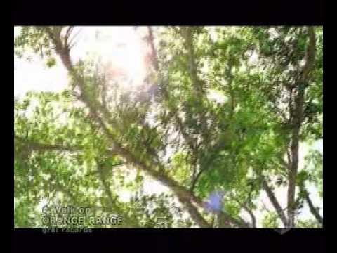 Orange Range   walk on - YouTube