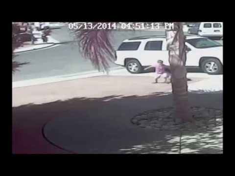 【海外】犬が子供を襲い引きずり回す それを助けたのはなんと・・・猫 !! - YouTube