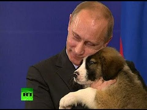A Dog's Heart: Pet lover Putin needs name for fluffy puppy - YouTube