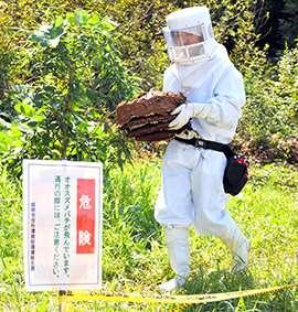 スズメバチ駆除で爆発、自宅炎上「どこがスペシャリストやねん!」家族怒り心頭