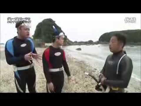 探偵!ナイトスクープ 『グレープフルーツの匂いのウミウシ』 - YouTube