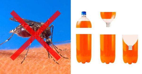 数万人の命を救った「蚊とりボトル」とは? ペットボトルで簡単に蚊を撃退する方法