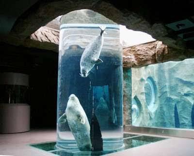 おすすめの水族館