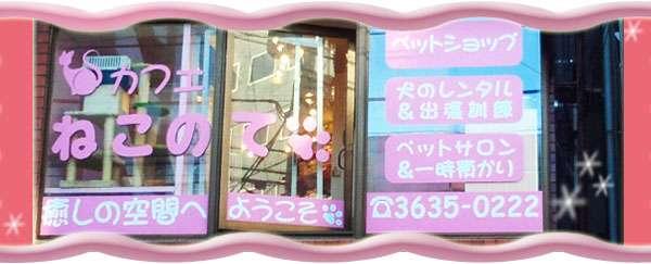 クチコミ : 猫カフェ ねこのて [東京都墨田区江東橋/ペット、動物病院(その他)] - Yahoo!ロコ