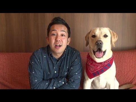 ワンワン教室#1 犬を飼う前に チェック8【ポチたま公式】 - YouTube