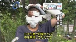 痛いニュース(ノ∀`) : 副住職、スズメバチの巣を焼こうと火→ハチに逆襲され、火のついた棒を投げ捨てて逃げる→寺全焼…新潟 - ライブドアブログ