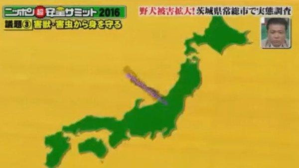 四国がオーストラリアの形、九州はアフリカ 奇妙な日本地図を放送したフジテレビが謝罪