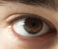 【恐怖】レーシック被害者が一年で使った目薬の量が恐ろしいと話題に - NAVER まとめ