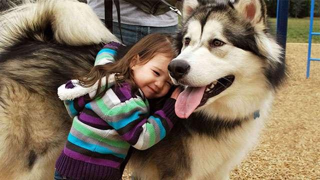 ペットと成長する子供たち。共生し何かを学びとる。画像15枚 | ANIMALive