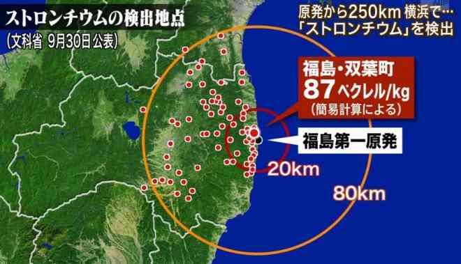 東北大が福島の被災牛の歯から放射性ストロンチウムを検出!事故後の歯で数値上昇、代謝では排出されず!|真実を探すブログ