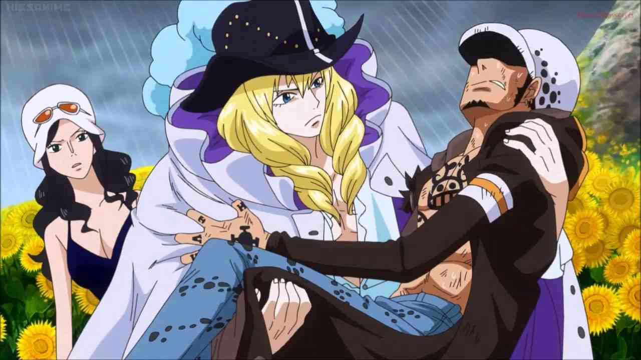 One Piece [725] - Law & Cavendish ! - YouTube