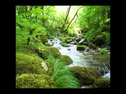 【癒し効果】 川のせせらぎ ヒーリング 【睡眠用】healing sound - YouTube