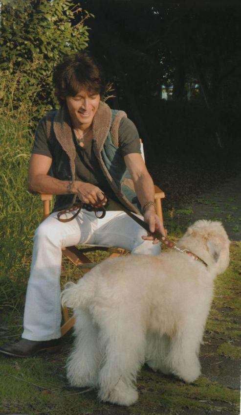 犬と稲葉浩志