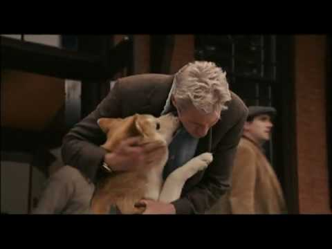 Hachiko a true life dog story