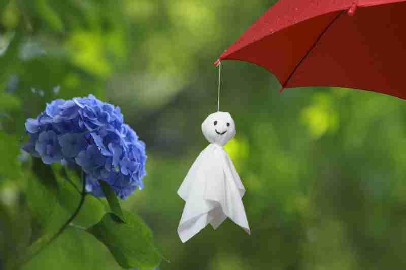 梅雨の一句