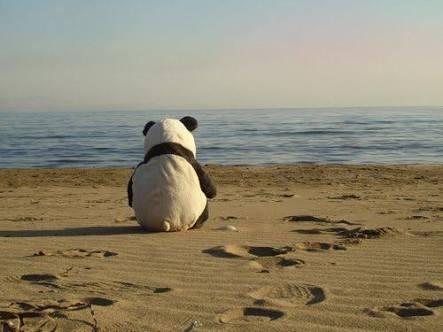 孤独な人集合