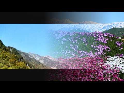 奈良光枝の画像 p1_6