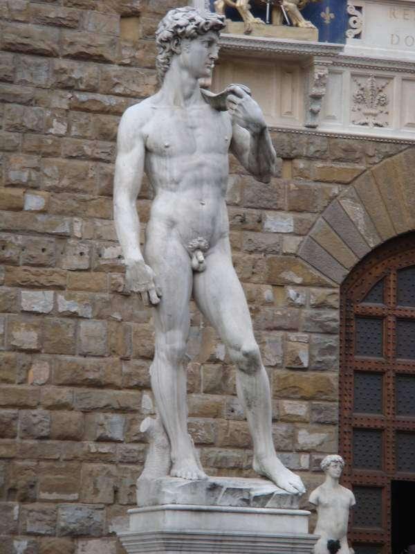 パートナーの裸をどのくらい見ますか?