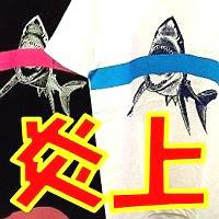 探偵ファイル〜スパイ日記〜/中川翔子デザインのグッズ、イラストに盗用疑惑?酷似する写真が発覚で炎上/高橋
