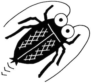 ゴキブリ対策に重曹が効く!