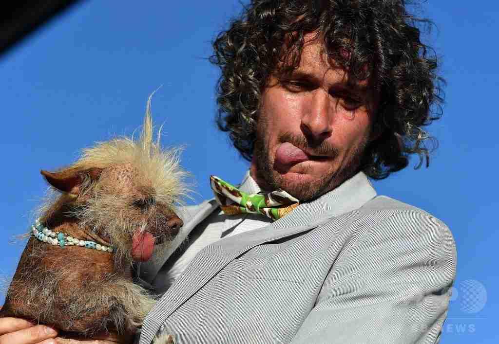 愛らしさも世界一? 「醜い犬コンテスト」今年も開催 米国