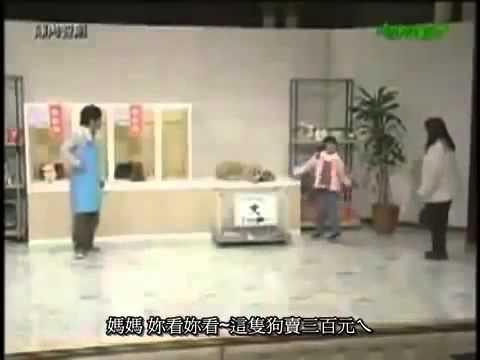 陣内智則 ペットショップ - YouTube