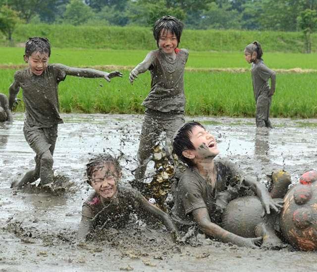 泥んこで全力疾走、由利本荘市 田んぼで競走、そりレース|秋田魁新報電子版