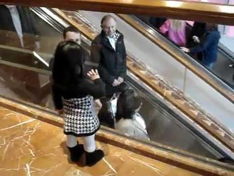 幼女が通りすがりの人に手を振ってバイバイ - YouTube