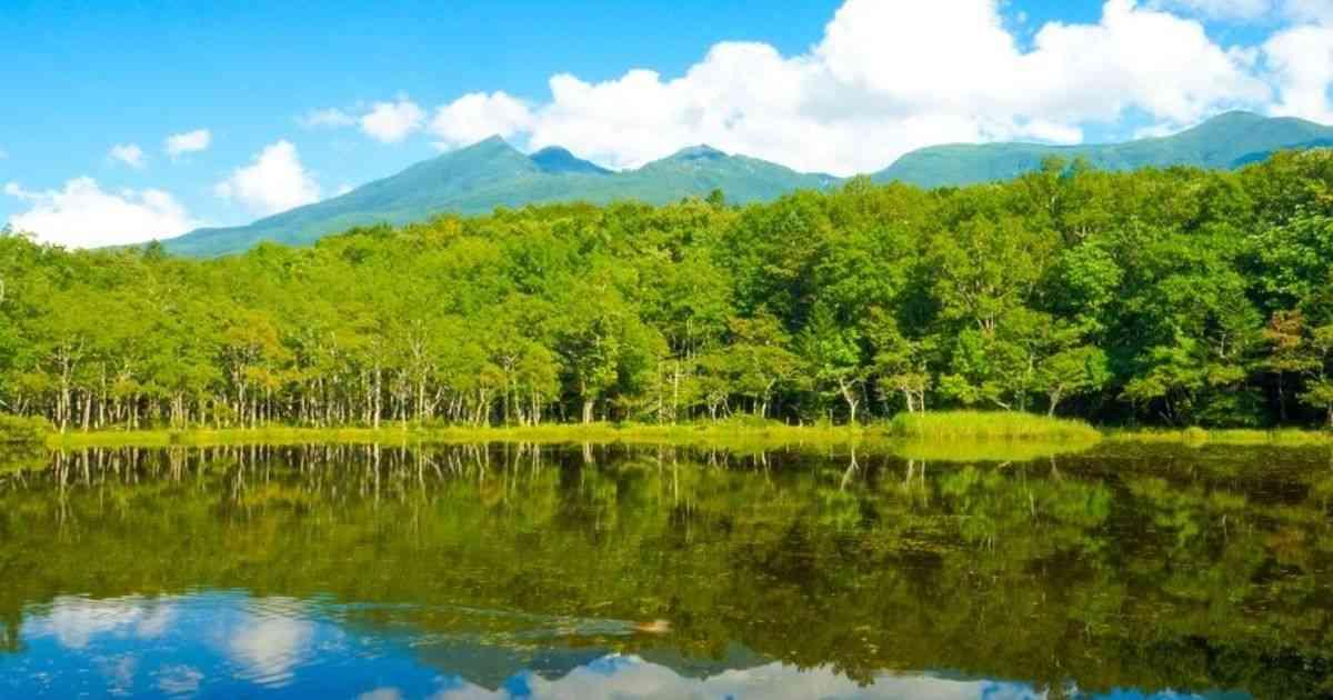 北海道の大自然に心が震える!秘境の地「知床」はパワーあふれる絶景ずくめだった! - Find Travel