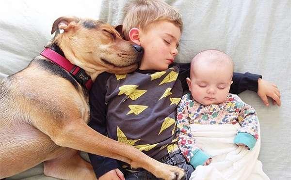 仲良くお昼寝!2人と1匹の添い寝写真がかわいすぎる − ISUTA(イスタ)オシャレを発信するニュースサイト