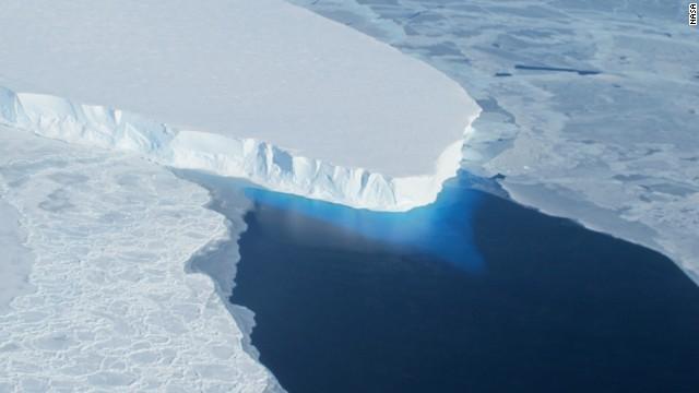 CNN.co.jp : ペンギンが大量死、氷山に餌場への道阻まれる 南極大陸