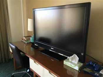 テレビがなくなったら困りますか?