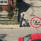 【動画あり】犬と散歩をするおじいちゃん。犬の無言の優しさが垣間見える心温まる動画 | ANIMALive