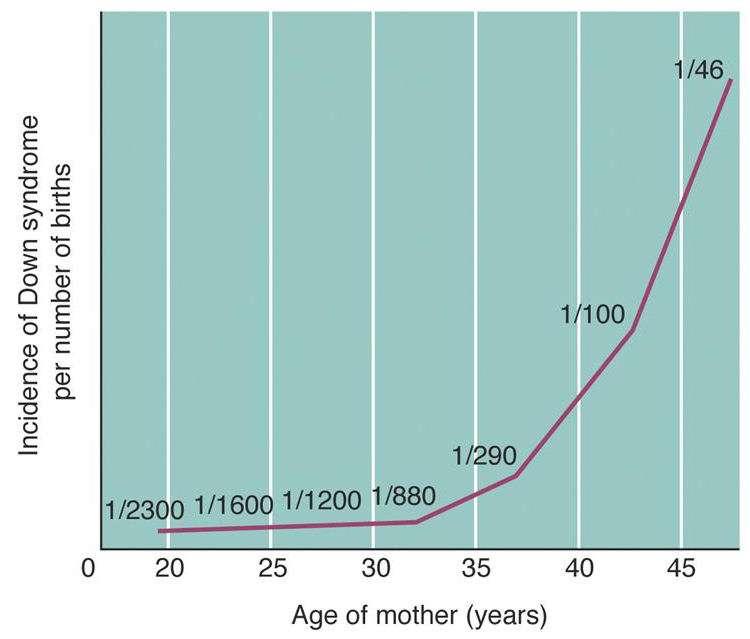 胎児がダウン症などと確定の妊婦 97%が人工中絶