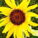 @kaoringo___ • Instagram photos and videos