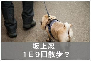 坂上忍がある町内会の驚きのルールに激怒「犬の散歩は脇に抱えて行う」