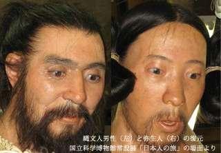 顔から探る日本人の起源~あなたは縄文系か弥生系か~ | イベントレポート | イベント | d-labo
