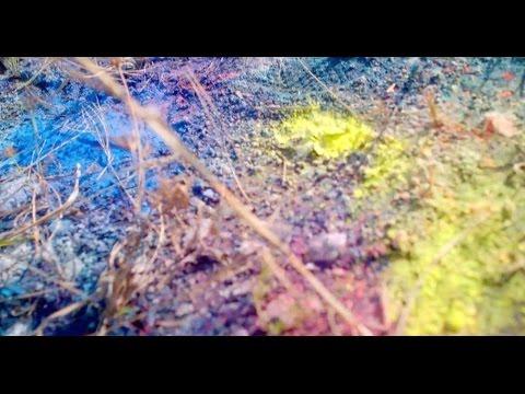 米津玄師 MV「Flowerwall」 - YouTube