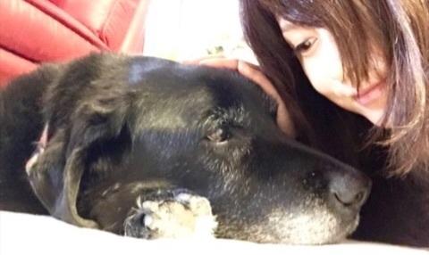 藤原紀香、愛犬の死に涙「一生、一生、忘れません」
