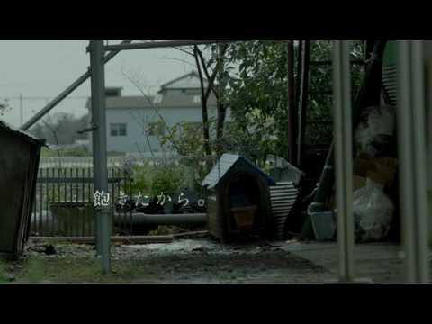 2016年度ACジャパン全国キャンペーン『死因』/#動物殺処分 - YouTube