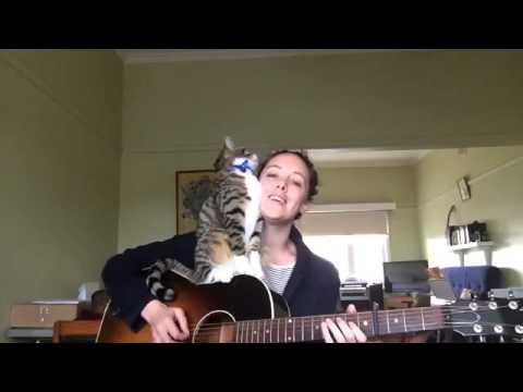 かわいい!かまってほしさで演奏を全力で邪魔する猫! - YouTube