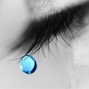 最近泣きましたか?