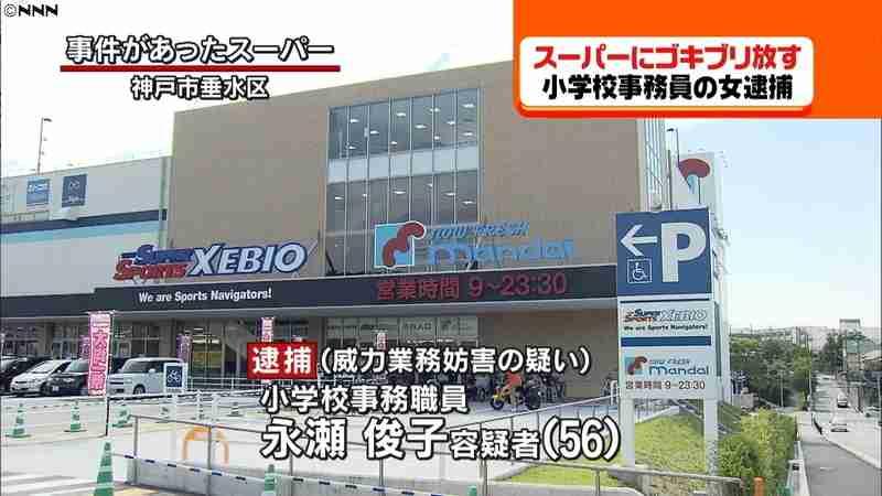 スーパーでゴキブリまき散らし放置 女逮捕(日本テレビ系(NNN)) - Yahoo!ニュース