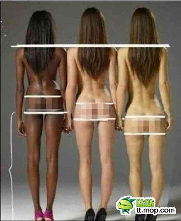 身体に関する雑学