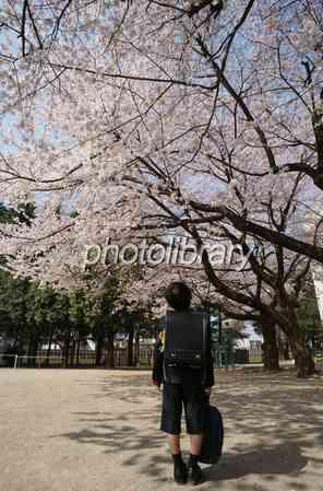 「入学式に桜が咲いてない!」最近のモンスターペアレントが凄いと話題に