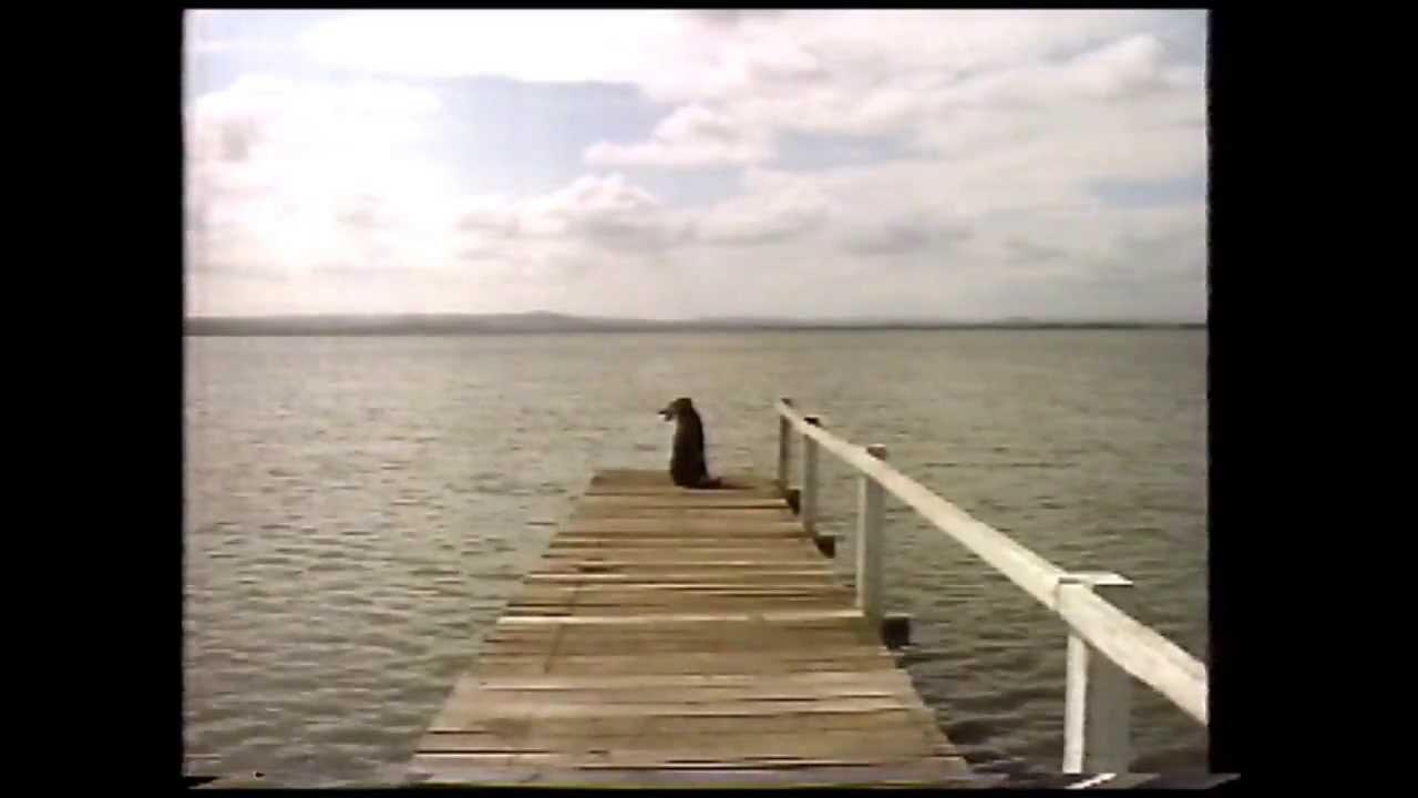 山下達郎 「さよなら夏の日」 (1991年5月・オリコン12位)